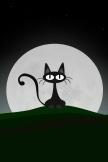 Mond-Katze