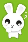 ウサギの質問