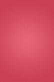 赤れんが色