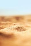 砂のマクロ