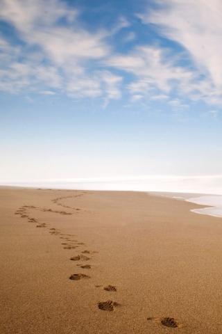 砂の足跡 iPhoneの壁紙