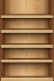 Light Wooden Shelves