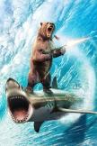 Bär-Shark